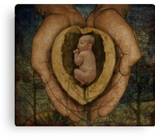 Life...In A Nutshell Canvas Print