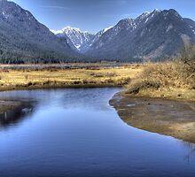 Blue Lagoon by PrairieRose