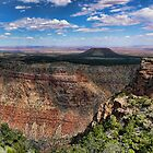 Mojave view by Brett Williams
