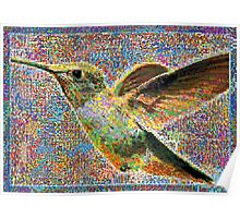 Colorful Hummingbird Poster