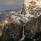 Evening Sun Greets the Mountains ~ Cathedral Rocks and Bridalveil Fall, Yosemite by Patty Boyte