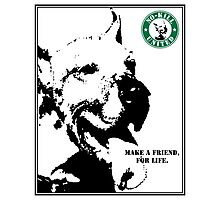 NO-KILL UNITED : ES MAKE A FRIEND (PRINT) Photographic Print