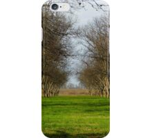 The Pecan Orchard iPhone Case/Skin