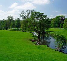 Riverside Meadows, Ashford-in-the-Water  by Rod Johnson