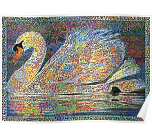 Colorful White Swan Poster