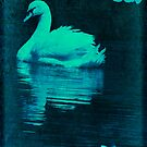 NIGHT SWAN by DALE CRUM