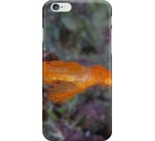 Hairy Ghost Pipefish iPhone Case/Skin
