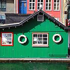 Copenhagen. The Green House on Water by Igor Shrayer