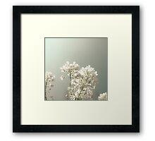 Pure Spring Framed Print