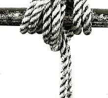 Knot Tied Down by Stephen Mitchell