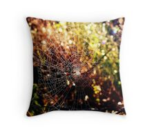 Rustic Web Throw Pillow