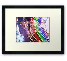 Rainbow Web Framed Print