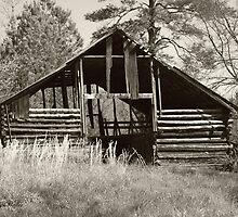 Forgotten Barn by Judy Gayle Waller