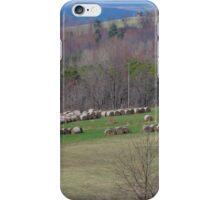 Bales of hay iPhone Case/Skin