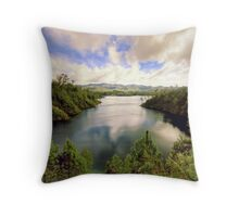 chiapas 103 Throw Pillow