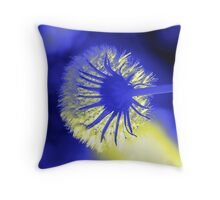 paint brush Throw Pillow