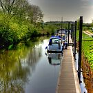 The Canal Bank Walk by Trevor Kersley