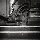 Big Steps, Little Door by Haydn Williams