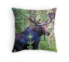 Bullwinkle Throw Pillow
