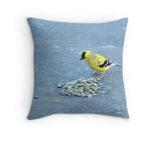 Hey, Someone's Been At My Stash!  Throw Pillow