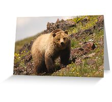 Grizzly & Wildflowers Greeting Card