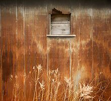 Rusted by Jesse J. McClear