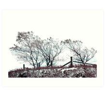 Cluster of Trees Art Print