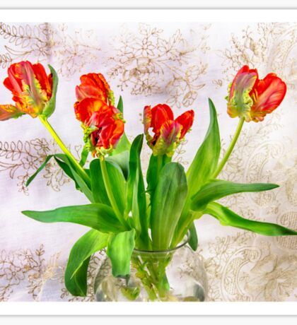 HDR French Red Tulips  Sticker