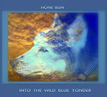 INTO THE WILD BLUE YONDER by artist4peace