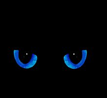 Black Cat Blue Eyes by MattDC