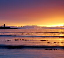 Firth Light by Blackgull