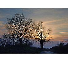twilight lane Photographic Print