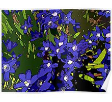 Ground Cover Violets Poster