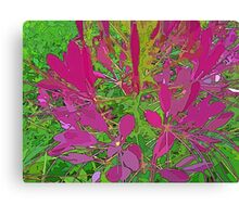 Pink Ground Cover Canvas Print
