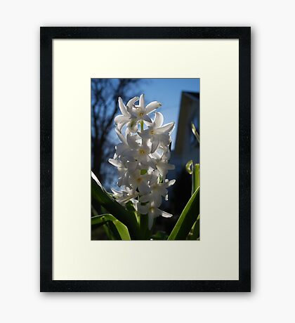 in your front yard Framed Print