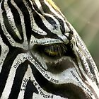 My Inner Zebra by Christina Brundage