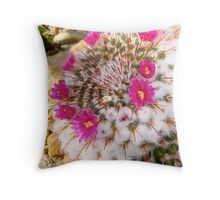 Cactus blossoms at Matthaei Botanical Gardens Throw Pillow