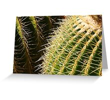 Cactus Intersect Greeting Card