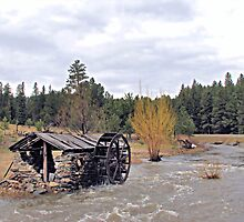 Old Water Wheel Shed by WILDBRIMOWILDMAN