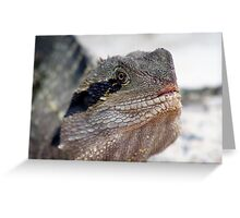 Dragon.. Greeting Card