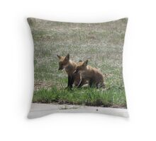 Twin Baby Foxes 02 Throw Pillow
