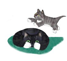 Kitten Jumping over Momma Cat by NineLivesStudio