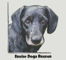 Old Lewie by SeniorDogs