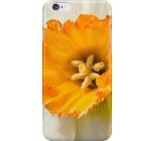 White Daffadil  iPhone Case/Skin