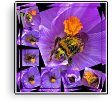 The Messiest Bee You Ever Did See! Canvas Print