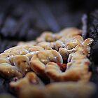 Fungi in the Pilliga Scrub by myraj