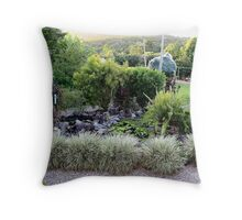 Our frog Pond Throw Pillow