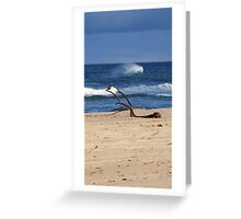 Bird on a Seaside Branch Greeting Card