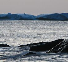 Iceberg at Pooch Cove by OldBirch