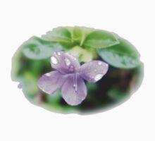 Violet Softness One Piece - Short Sleeve